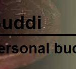Buddi personal budgeting program